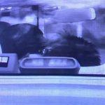 岩崎恭子のキス写真(タクシー車内画像)まとめ!不倫相手は誰なのか調べてみた