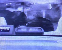 岩崎恭子のフラッシュキス写真画像(タクシー車内)1