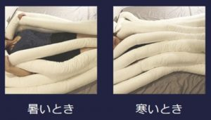 睡眠用うどん布団の画像6