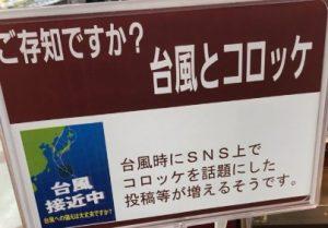 台風コロッケイオン画像